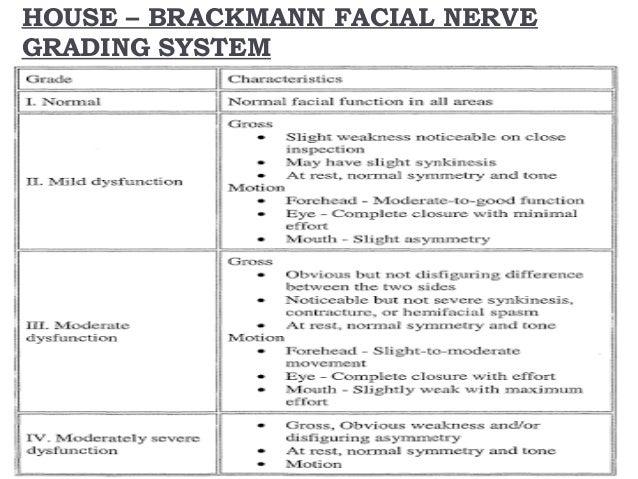 House brackmann facial nerve