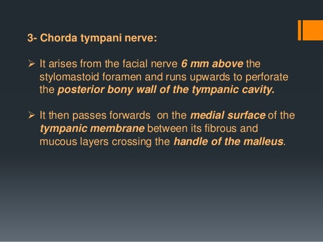  The cervical branch of the facial nerve runs forward  It forms a series of arches across the side of the neck over the ...