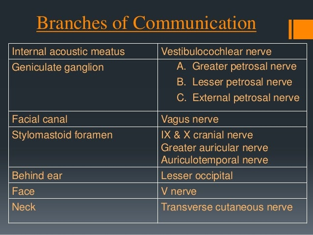 Facial Nerve blood supply The facial nerve gets it's blood supply from 4 vessels:  Anterior inferior cerebellar artery – ...