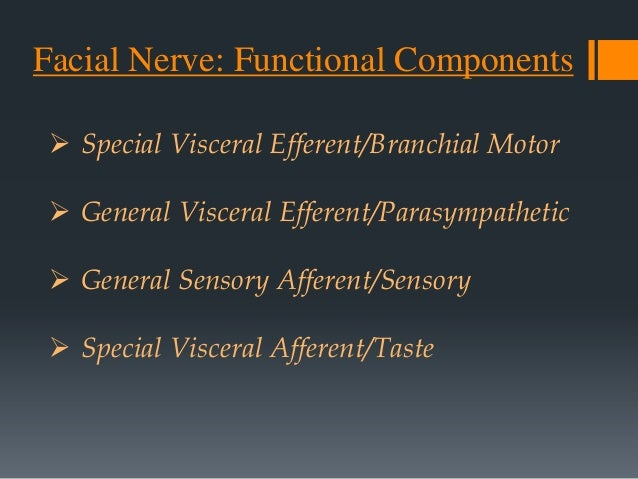 1. Type I facial nerve (straight branching) with variations. Type IA  I). Zygomatic sending a loop to itself ii). Absent z...