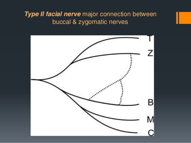 Post-operative complications of parotid gland surgery Post-operative facial nerve dysfunction involving some or all of the...