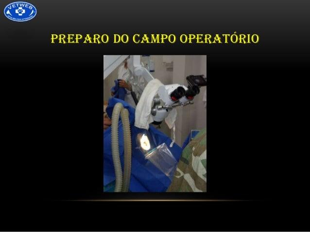 PREPARO DO CAMPO OPERATÓRIO