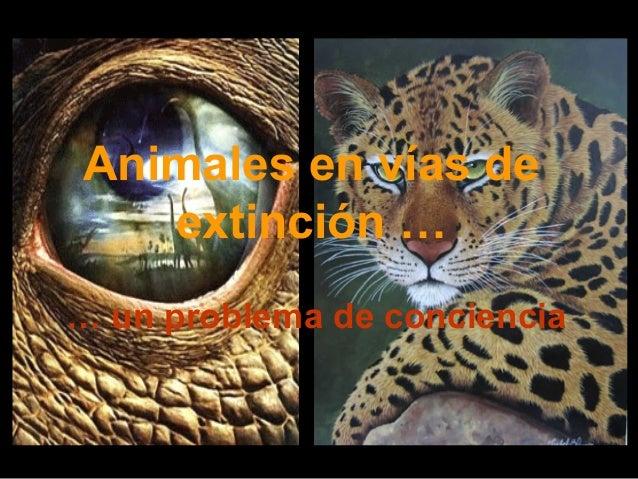 Animales en vías de   extinción …… un problema de conciencia