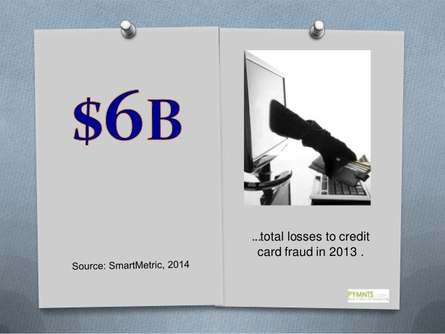 …total losses to credit card fraud in 2013 .