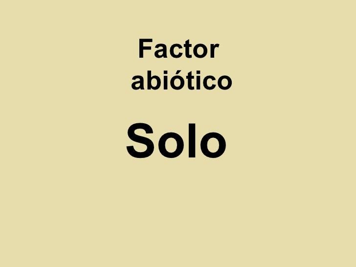 Factor  abiótico Solo