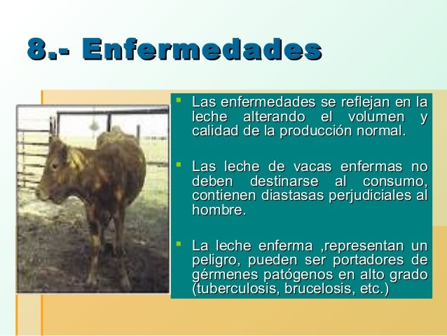 8.- Enfermedades  Las enfermedades se reflejan en la leche alterando el volumen y calidad de la producción normal.  Las ...