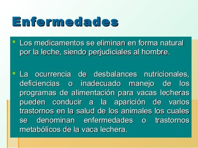 Enfermedades  Los medicamentos se eliminan en forma natural por la leche, siendo perjudiciales al hombre.  La ocurrencia...