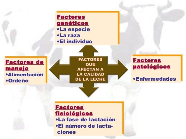 Factores Factores genéticos genéticos •La especie •La especie •La raza •La raza •El individuo •El individuo Factores Facto...
