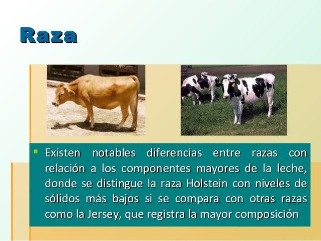 Raza   Existen notables diferencias entre razas con relación a los componentes mayores de la leche, donde se distingue la...