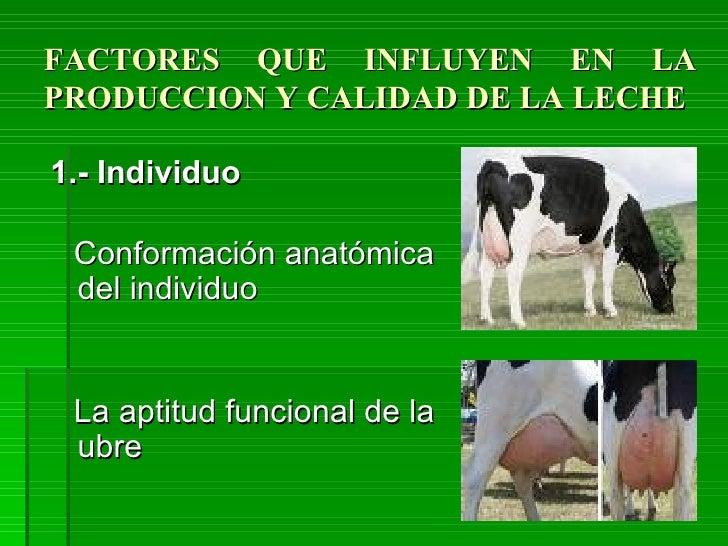 Factores leche[1] Slide 2
