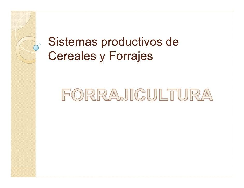 Sistemas productivos de Cereales y Forrajes