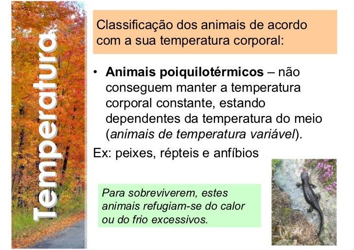 95699669b2 12. Classificação dos animais de acordo Temperatura com a sua temperatura  corporal  • Animais homeotérmicos – conseguem manter ...