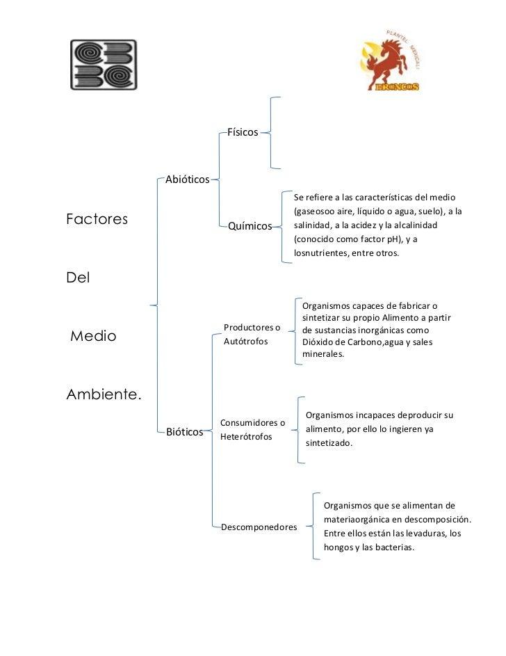 Factores bioticos y abioticos for Componentes quimicos del suelo