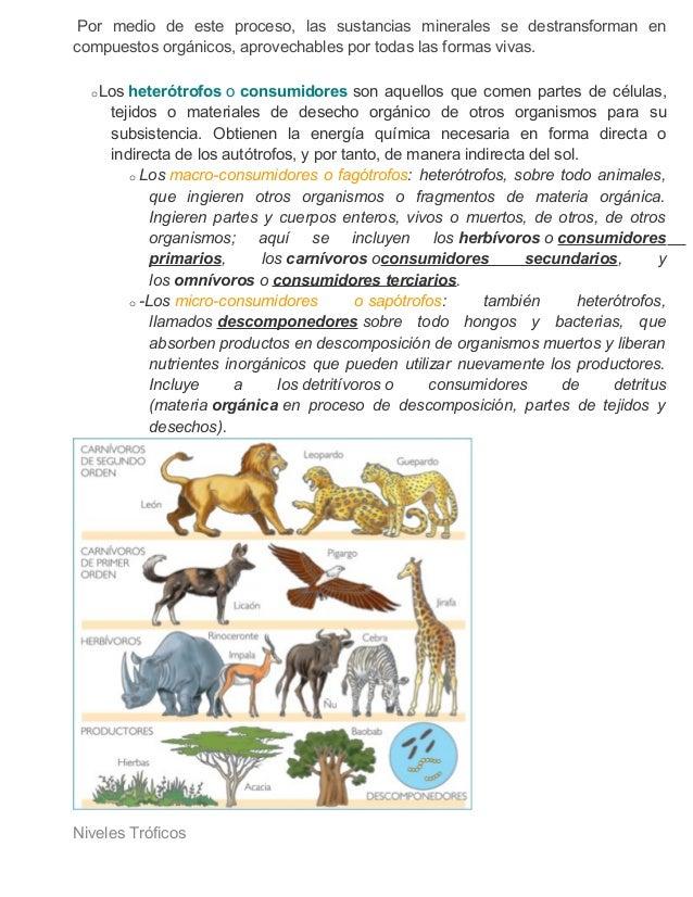 Factores biticos y abioticos