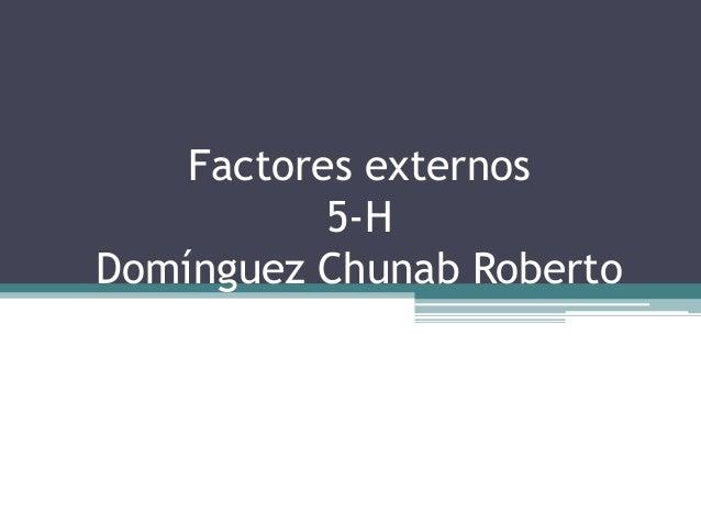 Factores externos 5-H Domínguez Chunab Roberto