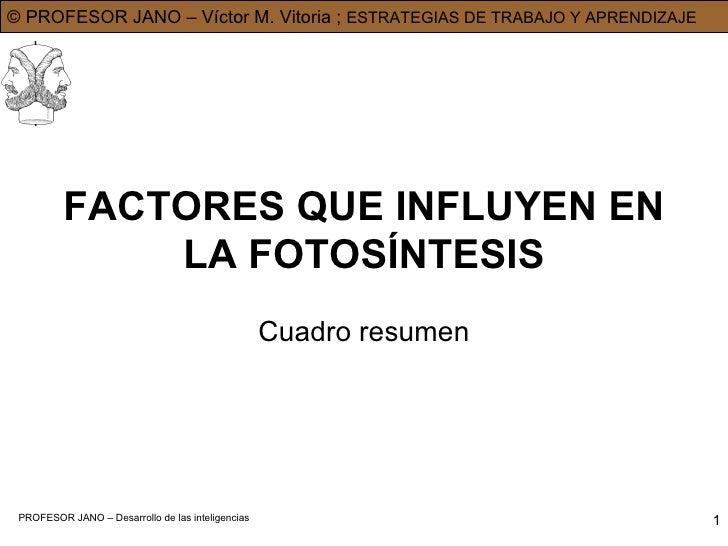 FACTORES QUE INFLUYEN EN LA FOTOSÍNTESIS Cuadro resumen