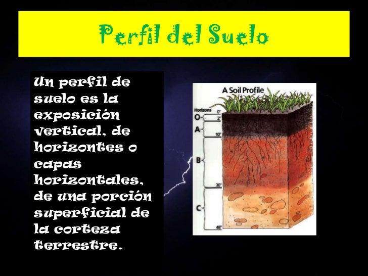 Factores y procesos de formacion de los suelos for Partes del suelo