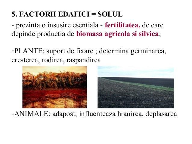Principalul factor favorizant al.micozelor