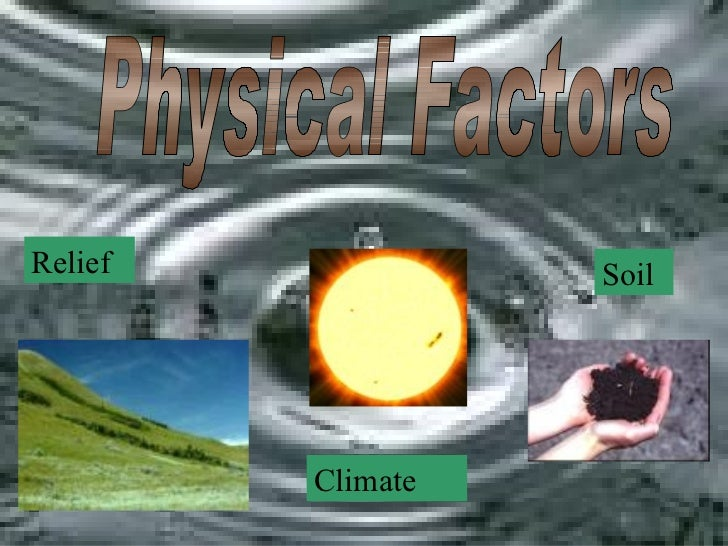 physical factors essay Factors affecting development: early language stimulation, literate communities and environment essay.