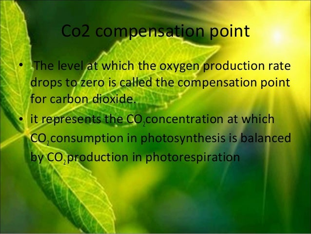 factors affecting the rate of photosynthesis Investigation into the factors affecting the rate of photosynthesis.