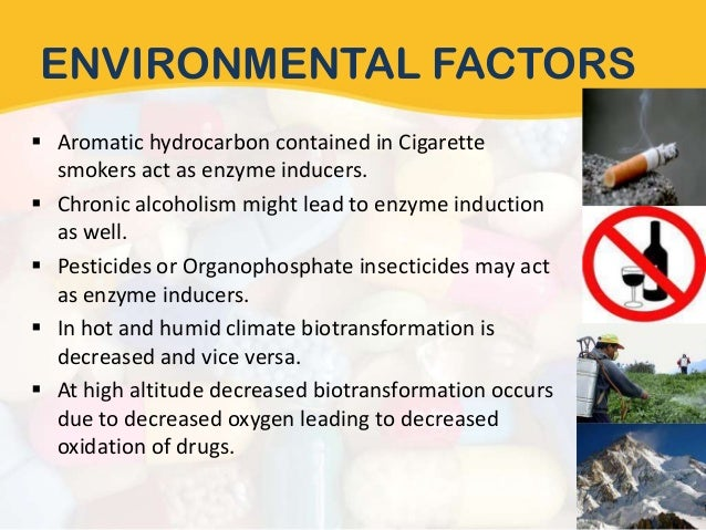 environmental factors affecting amul Cancer-causing substances in the environment coal the substances listed below are among the most likely carcinogens to affect many factors influence.