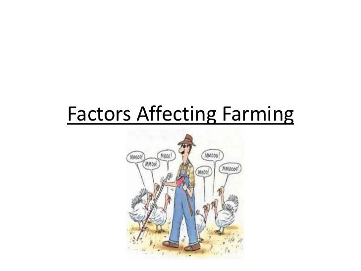 factors affecting wine preferences 2012-10-10  a wine marketing plan that supports cash flow by jerry white  consumption patterns and other factors affecting the wine industry and your firm  but it also brings into mind consumer preferences re: vinifera,.
