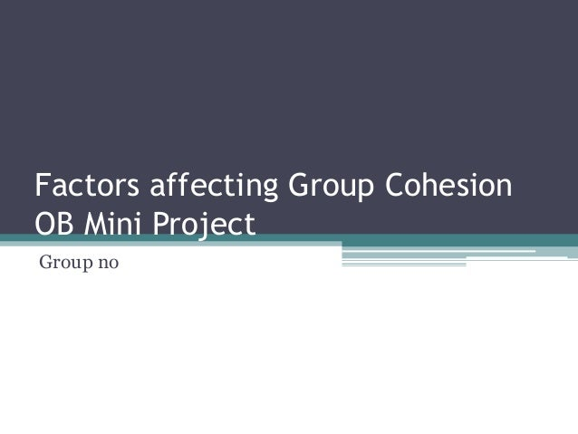 Factors affecting Group Cohesion OB Mini Project Group no