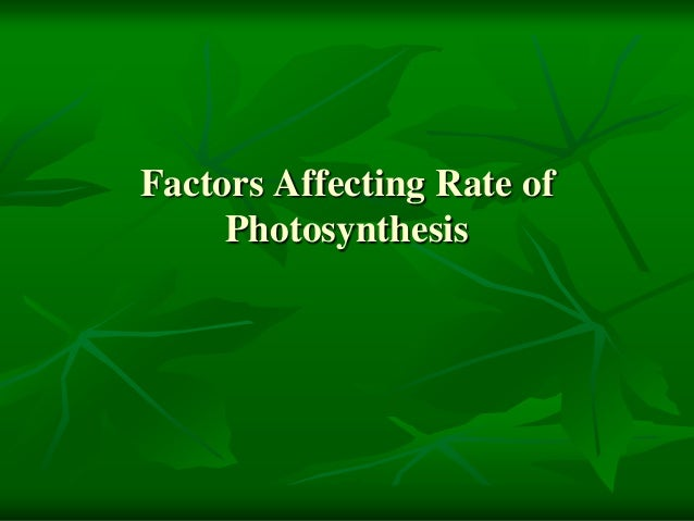 photosynthesis factors Photosynthesis is the process where a plants uses the sun's energy to turn light into chlorophyll photosynthesis is the single most important chemical process on the earth almost all plants needs the sun in order to survive plants produce oxygen during this process and utilize carbon dioxide.