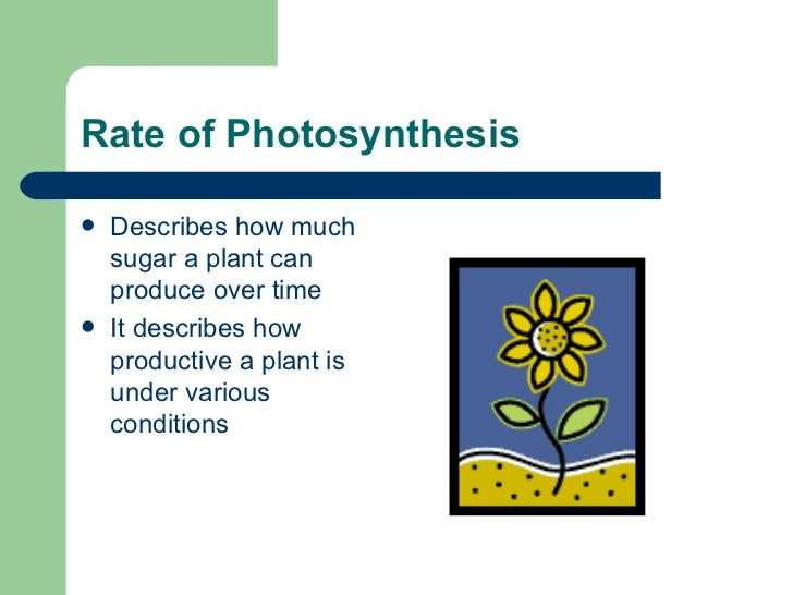 factors affecting the rate of photosynthesis Factors affecting photosynthesis during the process of photosynthesis, there are certain factors that alter (speed it up or slow it down) the rate at which the.