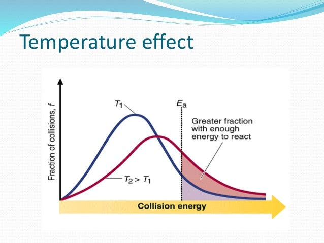 the effect of temperature on rate of reaction essay Enzyme activity can be affected we will write a custom essay sample on any topic to investigate the effect of temperature on the rate of reaction on.