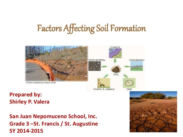factors affecting soil formation ForSoil Factors