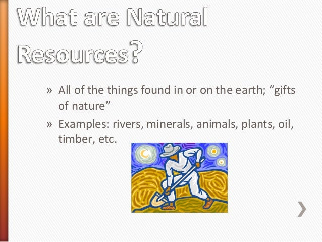 All Natural Resources Used To Make Goods And Services