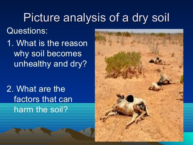 Factors that can harm the soil for Soil factors