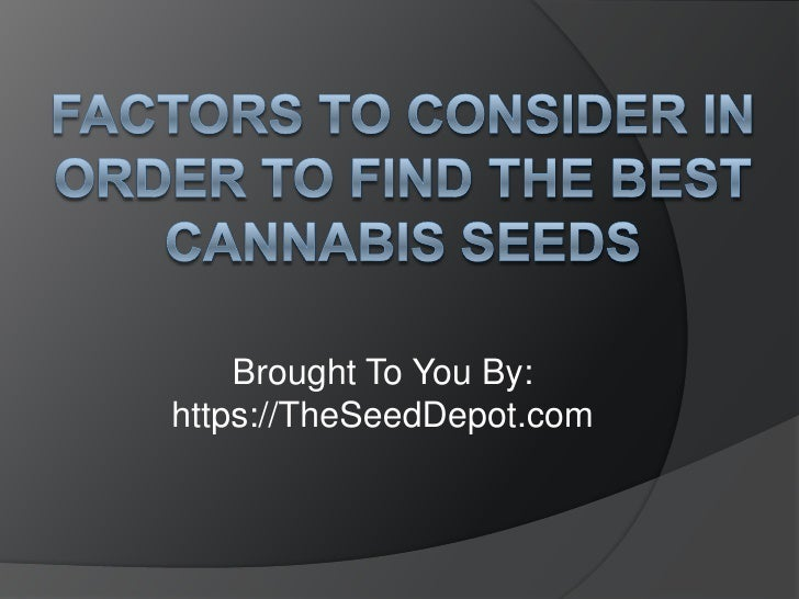 Factors to Consider in Order to Find the Best Cannabis Seeds<br />Brought To You By:<br />https://TheSeedDepot.com<br />
