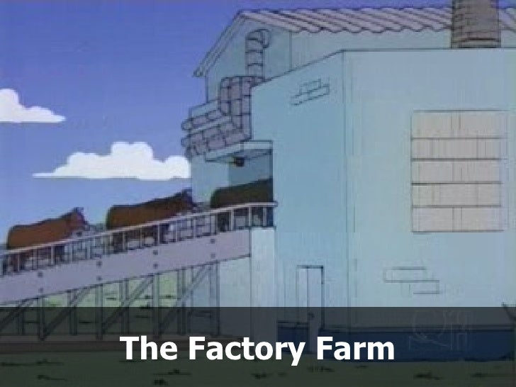 The Factory Farm
