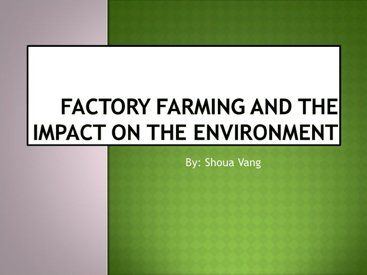 the impact of factory farms Cruelty to animals, health hazard to humans, and devastation to the environment - they are worst in factory farms which produce over 95% of meat, eggs and dairy in.