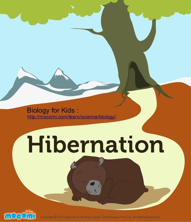 Biology for Kids :  http://mocomi.com/learn/science/biology/  Hibernation F UN FOR ME!  Copyright © 2012 Mocomi & Anibrain...