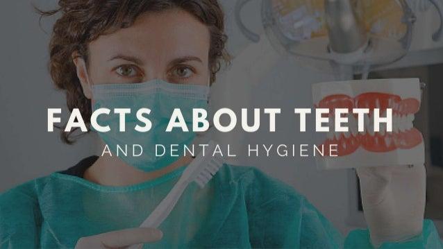 Facts About Teeth & Dental Hygiene