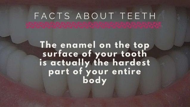 Facts About Teeth & Dental Hygiene  Slide 2