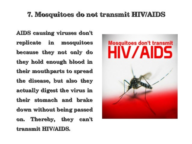 how mosquitos cannot transmit hiv aids Mosquitoes have the ability to carry several deadly viruses, such as malaria, dengue fever, and west nile virusa question raised by many people is whether uncommon diseases are transmitted through blood, like hiv.