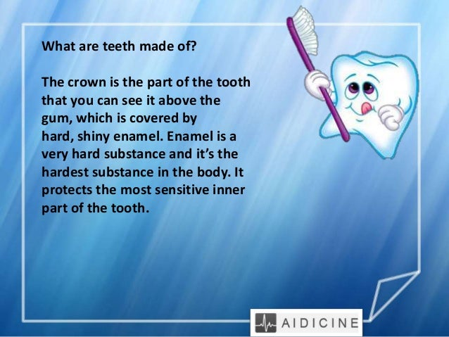 teeth facts