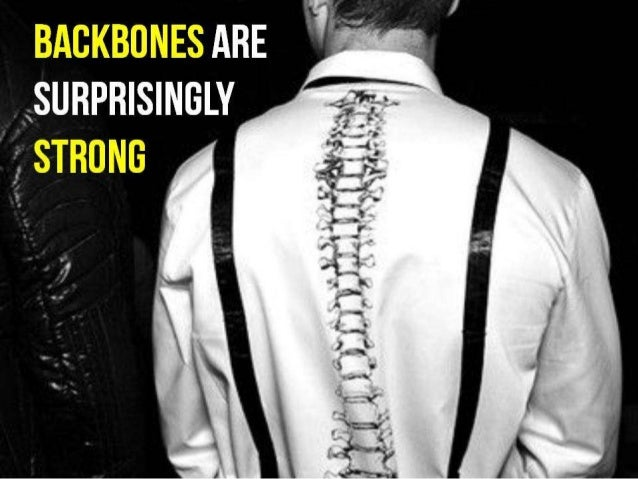 Facts About The Spine That You Probably Didn't Know