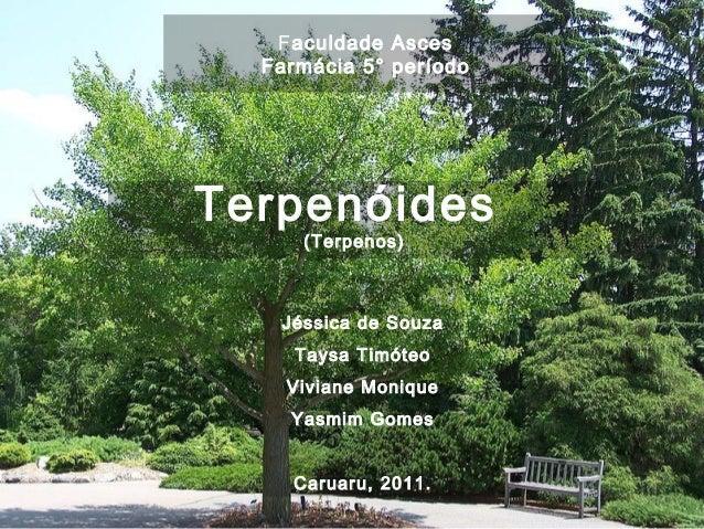 Faculdade Asces Farmácia 5° período Terpenóides (Terpenos) Jéssica de Souza Taysa Timóteo Viviane Monique Yasmim Gomes Car...