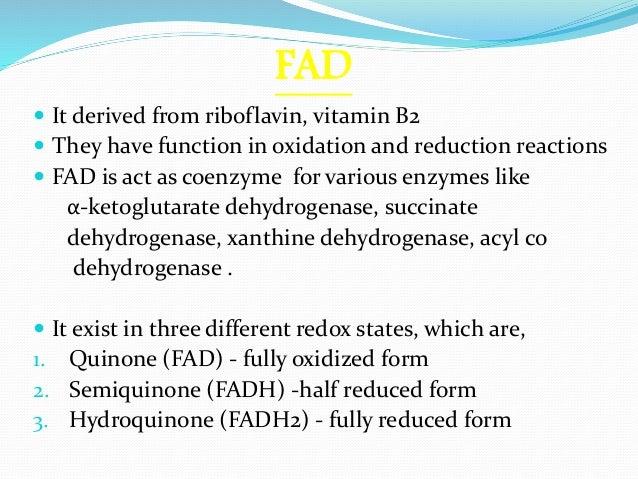 Fad – Flavin Adenine Dinucleotide