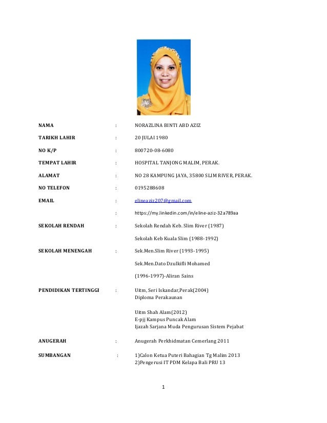 Resume Norazlina Abd Aziz