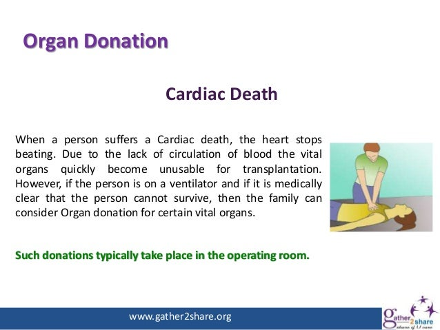 donation of organs essay Free essays organ donating good or bad organ donating donating organs while you are alive is also an option when donating and it could save the life of.