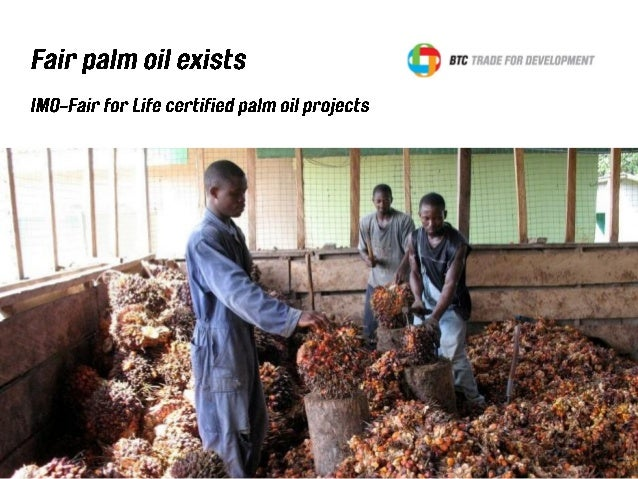 How sustainable is 'sustainable' palm oil? We raised this question in earlier articles about the Round Table for Sustainab...