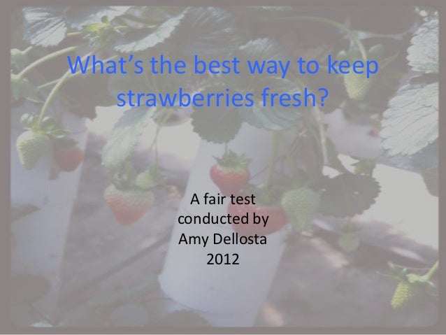 What's the best way to keep   strawberries fresh?           A fair test         conducted by         Amy Dellosta         ...