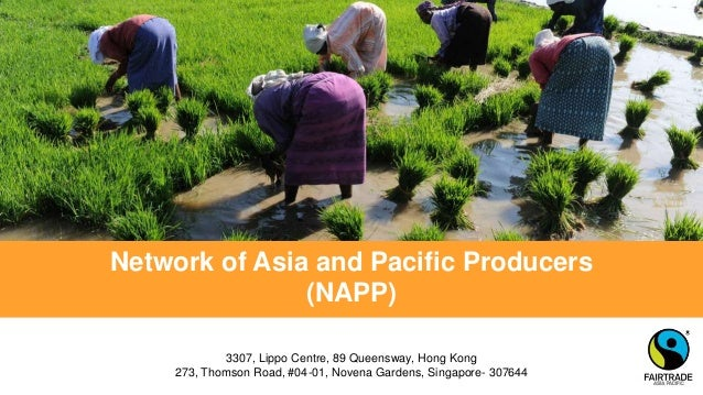 Network of Asia and Pacific Producers (NAPP) 3307, Lippo Centre, 89 Queensway, Hong Kong 273, Thomson Road, #04-01, Novena...