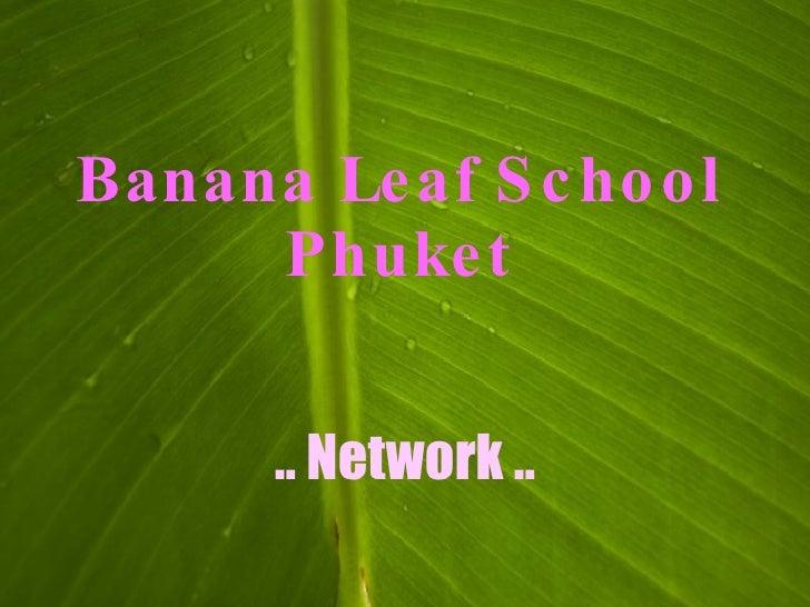 Banana Le af S c ho o l      Phuke t          .. Network ..